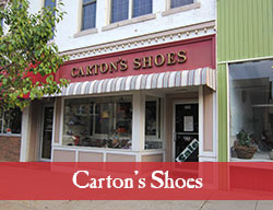 Cartons_Shoes