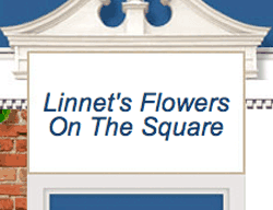 Linnet' Flowers on the Square